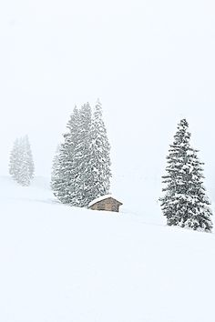 Winter Images, Winter Photos, Winter Mountain, Winter's Tale, Arctic Circle, Tropical Beaches, Winter Solstice, Cabins In The Woods, Winter Landscape