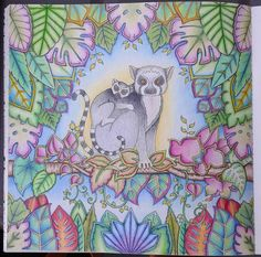 And now presenting our guest stars for the day: Lenny and his daughter Lucy, the lemurs! !! Hihi I finished my wip last night and im very proud of this one! I even pulled of a nice background! #arttherapy #adultcoloringbook #fabercastell #fabercastellpolychromos #magicaljungle #johannabasford #polychromos #coloringbookforadults #pencils #coloring
