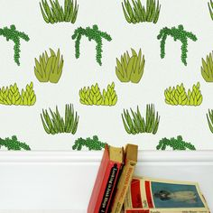 Succulent Wallpaper » Pretty Dandy