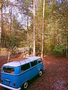 Vw - bus - van - bulli -t2 - forest