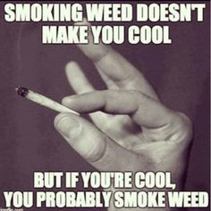 Buy Marijuana Online I Buy Weed online I Buy Cannabis online I Edibles Stoner Quotes, Weed Quotes, Weed Memes, Weed Humor, Stoner Humor, 420 Memes, Smoke Weed, Puff And Pass, Medical Marijuana