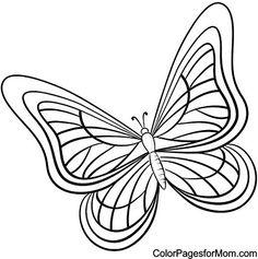 Zeichnung einer erwachsenen Libelle