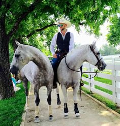 Double Dan Horsemanship - this was at the Kentucky Horse Park and I totally was just to the left of this pair while this photo was taken!!!!