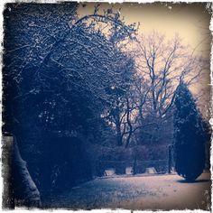 winter wonder land garden