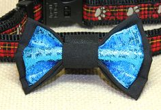 A cool twist to a dog bow - blue metallic against a black background. A great way for your best friend to be in your wedding party. Lame Fabric, Looking Dapper, Dog Bows, Blue Dog, Metallic Blue, Bow Ties, Stone Pendants, Beautiful Necklaces, Black Backgrounds