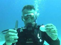 Scuba Diving Egg Trick