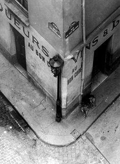 5th arrondissement. Paris, 1936 by André Kertész.