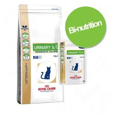 Animalerie  Pack bi-nutrition : croquettes  boîtes Royal Canin Veterinary Diet  Renal RF 23 (4 kg  12 x 195 g)