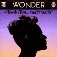 Naughty Boy feat. Emeli Sandé - Wonder (Kidnap Kid Remix) by Kidnap Kid on SoundCloud