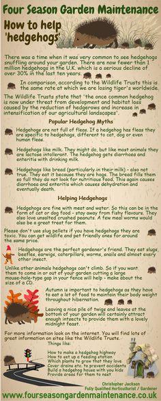 Thinking about hedgehogs!! Bradford Gardener - Christopher Jackson www.fourseasongardenmaintenance.co.uk