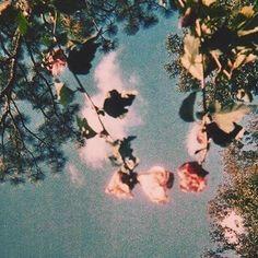 Flower Aesthetic, Aesthetic Vintage, Aesthetic Photo, Aesthetic Pictures, Nature Aesthetic, Aesthetic Grunge, 1950s Aesthetic, Aesthetic Captions, Rose Gold Aesthetic