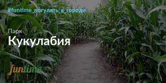 Масштабный агропарк развлечений «Кукулабия» с лабиринтом в кукурузном поле