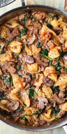 Creamy Spinach Mushroom Tortellini with Caramelized Onions is an Italian pasta dish packed with veggies. This easy and delicious meatless recipe is a perfect weeknight dinner! If you're looking for a simple creamy tortellini recipe, Vegetarian Recipes, Cooking Recipes, Healthy Recipes, Meatless Pasta Recipes, Veggie Pasta, Italian Pasta Dishes, Best Pasta Dishes, Spinach Stuffed Mushrooms, Spinach And Mushroom