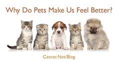 Cancer.Net - Google+