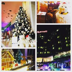 May your day spark & shine like Christmas tree...Goodnight from Rayong Marriott Resort & Spa #marriottrayong #merrychristmas #rayongescape