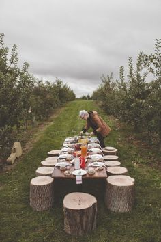 An Orchard Brunch