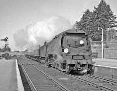 Bournemouth standby loco 34103 'Calstock' charges through New Milton with an express for London. It is deputising for a Nine Elms 'Merchant Navy' Pacific which had previously failed on the depot. Hampshire, England. Negative scan.