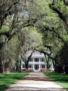 Rosedown Plantation - Built in 1835, Rosedown was named for a play that owners Daniel and Martha Turnbull saw on their honeymoon. Today, it is a National Historic Landmark and is run by the Office of State Parks. It was listed on the national register in 2001. Photo courtesy of Main Street St. Francisville and the West Feliciana Parish Tourist Commission.
