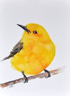 ORIGINAL Watercolor bird painting - Yellow Bird On A Branch, Yellow Warbler, Bird illustration 6x8 inch