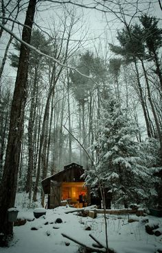 "renamonkalou: """"Sugar Shack in the Woods"" """