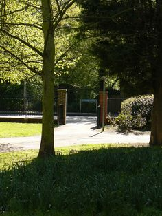 Sidewalk, Park, Plants, Side Walkway, Walkway, Parks, Plant, Walkways, Planets
