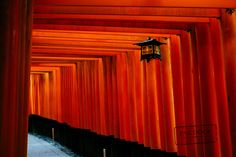 """Lamp at Fushimi Inari. Japan - Thousands of Torii gates at Fushimi Inari, one next to each other, until the top of the mountain.  Imagine the story of every Torii, how it arrived there and why, since the 8th century. Japan is unbelievable.  Fushimi Inari, near Kyoto, summer 2015  ------------------------------------------------   More at <a href=""""http://pakdock.com"""">pakdock.com</a>  <a href=""""https://www.pinterest.com/paksy/places-i-have-seen-photos-i-have-taken"""">PAk DocK in Pinterest</a…"""