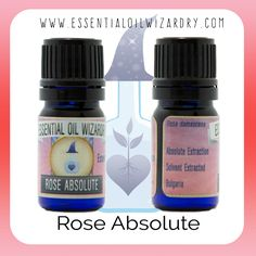 #divine #rose #healingissexy http://www.essentialoilwizardry.com/product/rose/