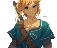 The Legend of Zelda The Legend Of Zelda, Legend Of Zelda Breath, Image Zelda, Link Botw, Botw Zelda, Another Anime, Link Zelda, Video Game Characters, Twilight Princess