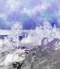 Painted Sky Over White Landscape Digital Art By Michael Hurwitz
