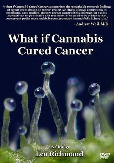 What if Cannabis Cured Cancer (DVD, 2011)