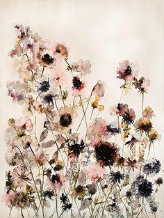 Lourdes Sanchez, wildflowers 2 2013, watercolor 48.5 x 37
