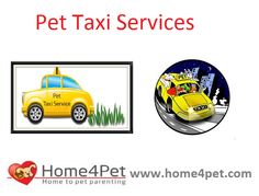 #Pet #taxi Services #home4pet for more visit..... http://home4pet.com/Pet-Services/Pet-Taxi