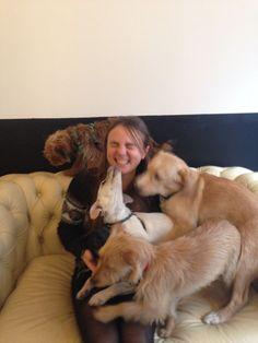 les 80 meilleures images du tableau chien sur pinterest dog animaux et pets. Black Bedroom Furniture Sets. Home Design Ideas