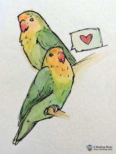 Lovebirds watercolor sketch