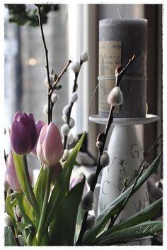 Springtime....