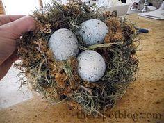 DIY bird's nest. - The V Spot