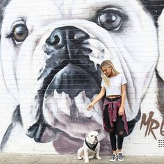 Cool Bull Dog street art. Huge painting on building. Very good job!