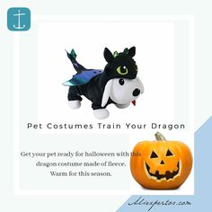 Pet Costumes Train Your Dragon!  - #Aliexpress found by #Aliexpertos  - Buy Link: http://ift.tt/2jxFZ7d - Buy Direct Link: http://ift.tt/2weVneF - Price per size: $1483 - Get your pet Halloween 2017 Ready! Free Shipping worldwide! - For more products like these please visit link in Profile  -  www.Aliexpertos.com - #petcostume #halloweenpetcostume #howtotrainyourdragon #dragocostume #petsofinstagram #animallovers #animalofinstagram #picoftheday #cute  #mansbestfriend…