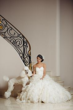 #Poodle #standard #white #wedding All photos in Wedding Dresses | OneWed.com