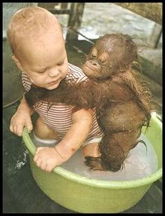 A real Monkey on your back. Looks Pretty Fun!