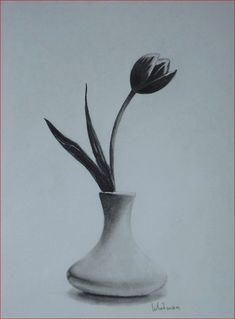 Tulip in a vase, still life sketch. Original art, graphite pencil drawing by Elena Whitman. Flower Vase Drawing, Flower Sketch Pencil, Pencil Sketch Drawing, Flower Sketches, Pencil Art Drawings, Realistic Drawings, Drawing Ideas, Still Life Sketch, Still Life Drawing