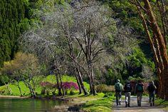 Azores, un bucólico archipiélago para amantes de la Naturaleza virgen, Portugal SENDERISMO Para los amantes de las caminatas tranquilas o los que buscan descargar adrenalina, las Azores ofrecen una variedad de senderos con diferentes niveles de dificultad y fácilmente señalizados para el excursionista.