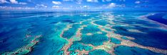 The Great Barrier Reef.....winning photo by Mark Gray copyright