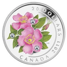 Canadian Alberta $20 coin with Alberta wild rose.