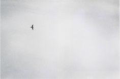 Felix Gonzalez-Torres (1957–1996). No title, 1995. Billboard image.