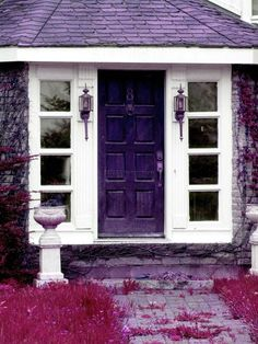 Wouldn't life be great with a purple house?
