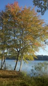 Horn Pond, Woburn, MA