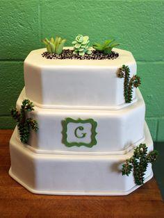 Succulent | Oklahoma's Premier Wedding Cake Designer and Sugar Artist