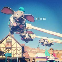 *  ダンボも乗るよー(๑′ᴗ‵๑)  * - @kinax- #webstagram