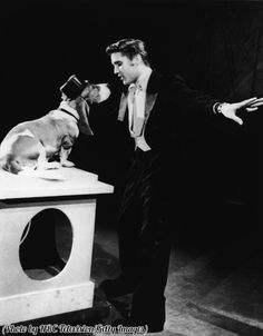 Elvis Presley sings 'Hound Dog' to a basset hound in a top hat.